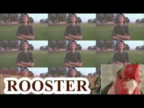 Humans doing a Rooster sound.. who is the best?