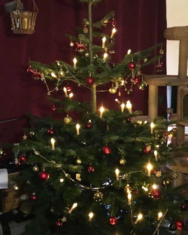 Ich wünsche allen Lesern meines Blogs, ein frohes und besinnliches Weihnachtsfest im Kreis eurer /Ihrer Lieben. Auch ich gehe in die Weihnachtspause und werde ab dem 02.01.2017 euch wieder mit…