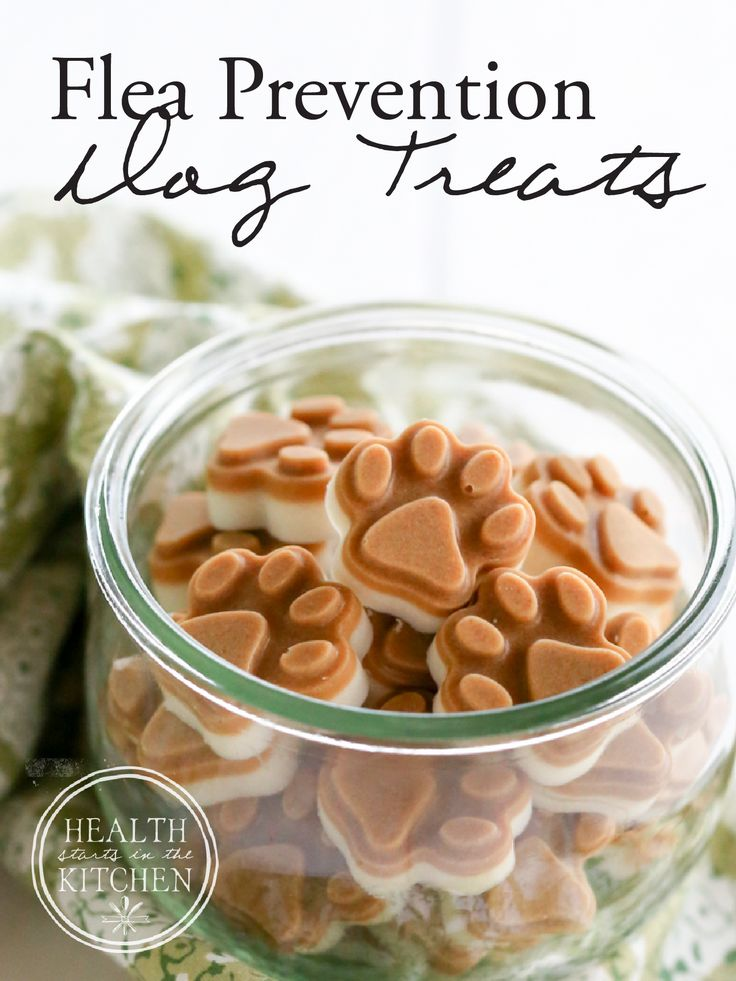Homemade Flea Prevention Dog Treats {2 Ingredients} - Say goodbye to toxic flea treatments!