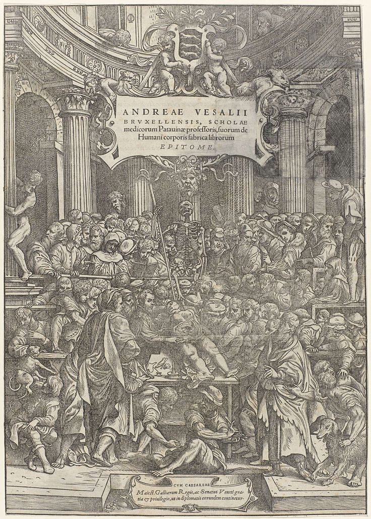 """Titelblad voor """"De Humani Corporis Fabrica"""" van Andreas Vesalius: anatomisch theater met een dissectie van een menselijk lichaam, Jan Stefan van Calcar, Anonymous, 1510 - 1538"""