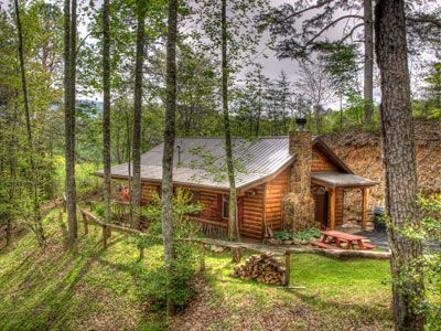 Best 25 north carolina cabin rentals ideas on pinterest for Cheap cabin rentals in asheville nc