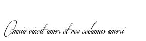 Omnia vincit Amor et nos cedamus amori - Virgil meaning: love conquers all, we too shall yield to love
