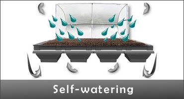 self_watering