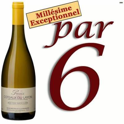 Coteaux du Layon - Vin blanc liquoreux de Loire - Millésime 1995 - Cuvée prestige