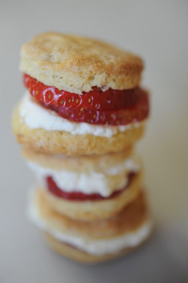 strawberry biscuit bites | Creature Comforts