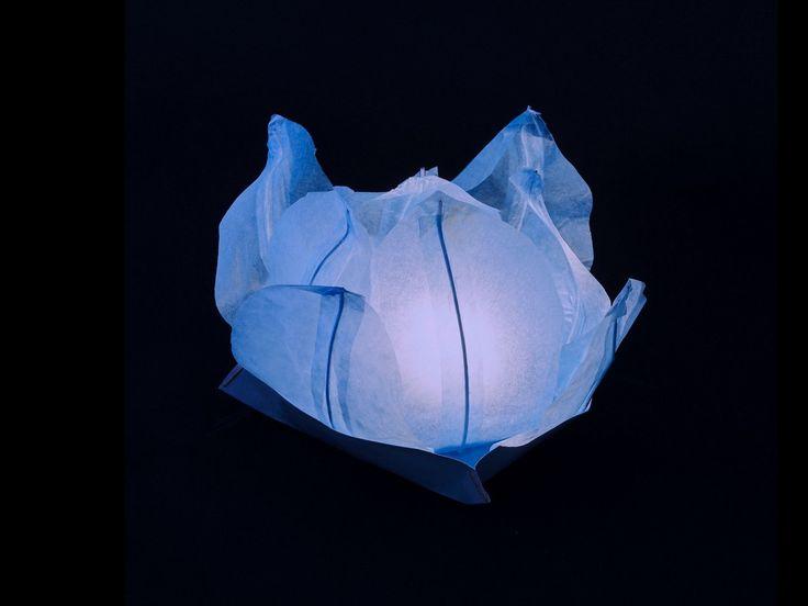 Ninfea Galleggiante di carta di riso azzura.Diametro 30 cm. Sono inclusi la candela, il manuale e il pennarello. Riutilizzabile, basta cambiare la candela.Istruzioni, la preparazione è molto facileScrivere...