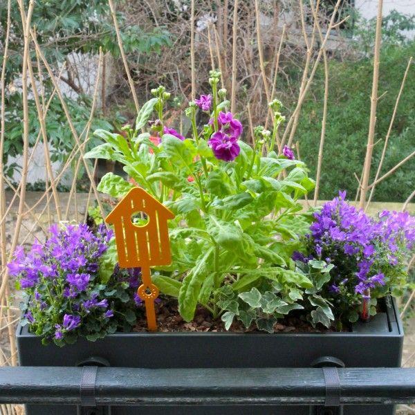 Les 17 meilleures images du tableau jardini res fleur en ville sur pinterest en ville fleur - Jardiniere mi ombre mi soleil ...