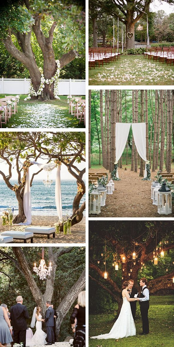 Best 25+ Outdoor Ceremony Ideas On Pinterest | Outdoor Wedding Aisles,  Weddings And Outdoor Wedding Flowers
