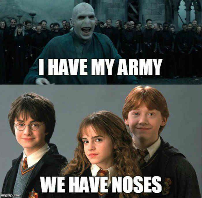 Funny Memes Hilarious Laughing Fun 18 1 Harry Potter Voldemort Harry Potter Memes Hilarious Harry Potter Jokes