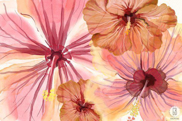 Watercolor hibiscus flower monstera - Illustrations