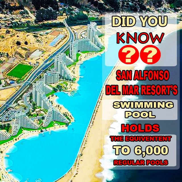 #Didyouknow that the largest hotel swimming pool is in front of #SanAlfonsodelMar resort in #Chile? The pool measures a length of 1km and holds the water of roughly 6000 regular swimming pools. Thanks @easytobook  for the great article! #DidYouKnow #FunFact #MindBlowing