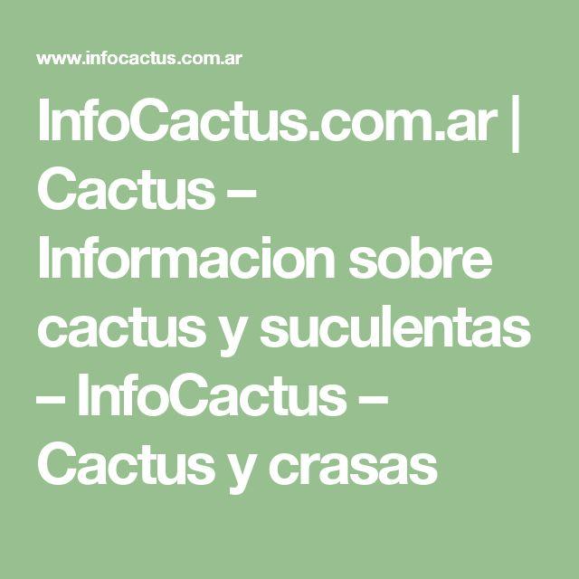 InfoCactus.com.ar | Cactus – Informacion sobre cactus y suculentas – InfoCactus – Cactus y crasas