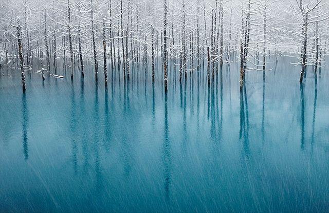 自然ってすごい! 海や湖や作り出す天然の雪氷アートが美しすぎる|TABIZINE