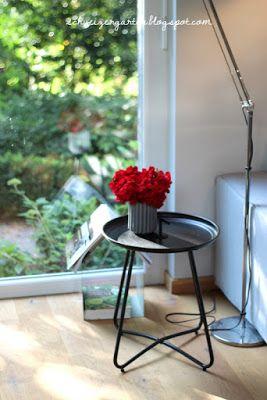 Geranienstrauss Im Abendlicht Pelargonien Eichenparkett Wohnzimmer Bodentiefe Fenster