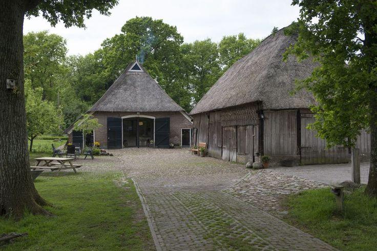 Natuurhuisje 26824 - vakantiehuis in Oosterhesselen