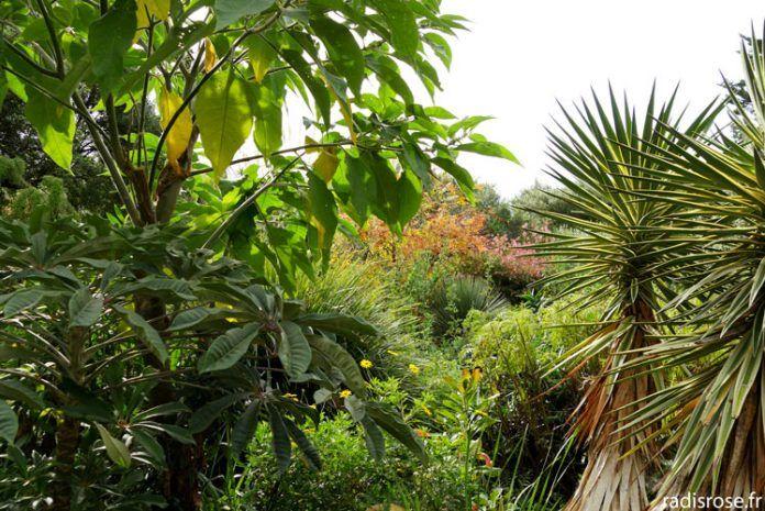 Botanische Tuinen Vauville September 2010 En 2020 Vauville