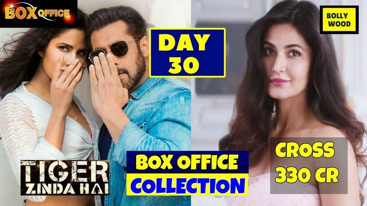 Salman Khan Tiger Zinda Hai 30th Day Box Office Collection Day 30