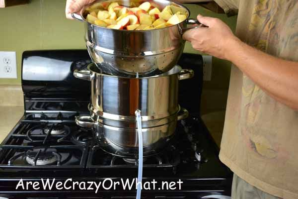 How To Make Apple Juice With A Steam Juicer~AreWeCrazyOrWhat.net