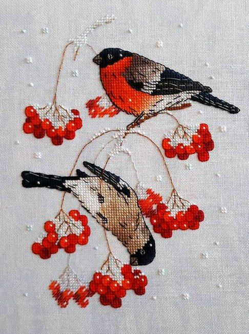 Winter birds and berries.