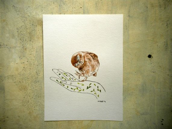 little owl illustration original pet portrait wall art in by vumap