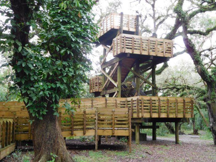 1. Tree Tops Park, Broward County