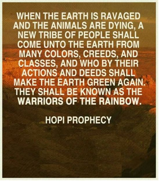 Hopi Prophecy Rainbow: 17 Best Images About History Of Wonder On Pinterest