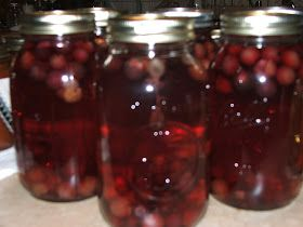 Canning Granny: Canning Muscadine Juice (Mama's Easy Way)