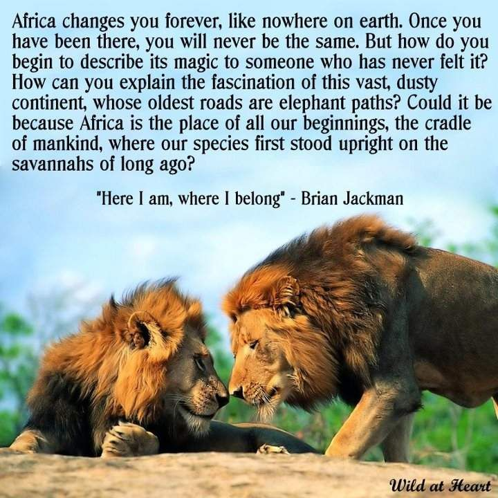 Africa quote. Don't understand the second part of the big paragraph, but the first part is cool.