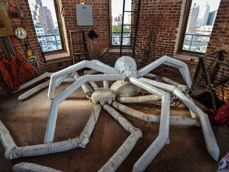 home library big spider - Google Search