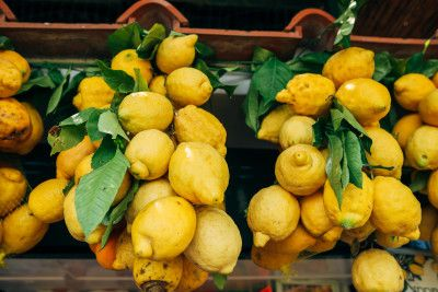 Lemons for Limonello
