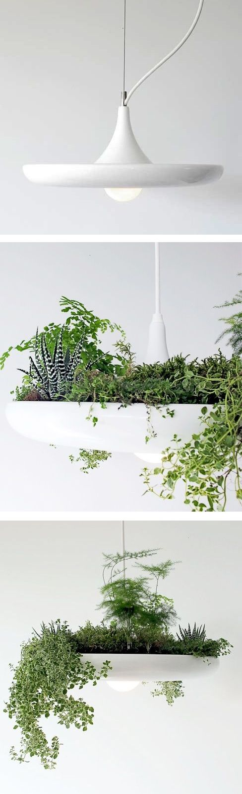 Babylon Light Fixture + Planter // absolutely epic! I want this in my house, now! #industrialdesign #productdesign #lightingdesign