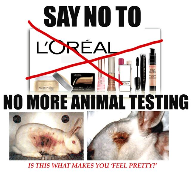 Boots No 7 Animal Testing Policy Details