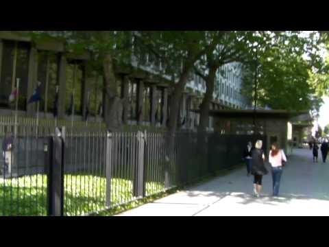 Charlie Veitch  vs. Armed Police at USA Embassy London