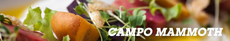 Campo Restaurant at Mammoth Mountain. Campo is your neighborhood restaurant, a gathering spot for great food and drink, and sharing good times with friends and family.