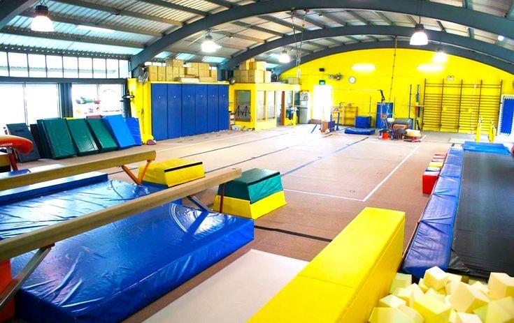 BazGym Gymnastics School Franchise Opportunity — RegionF Franchise ...