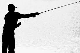 Image result for trout silhouette images