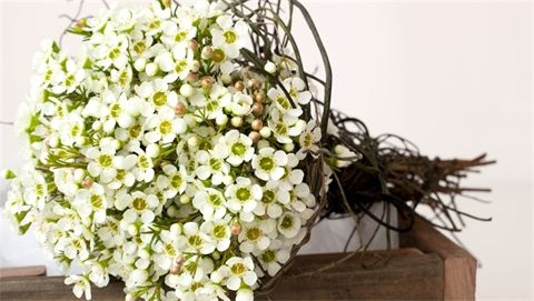 wax wedding flowers