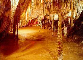 Hastings Caves and Thermal Springs  - Hastings, TAS Australia