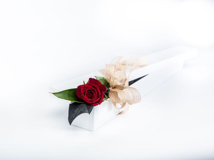 1 Long Stem Red Rose in a white gift box. www.fleurus.com.au