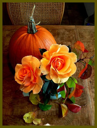 Roses and pumpkin idea