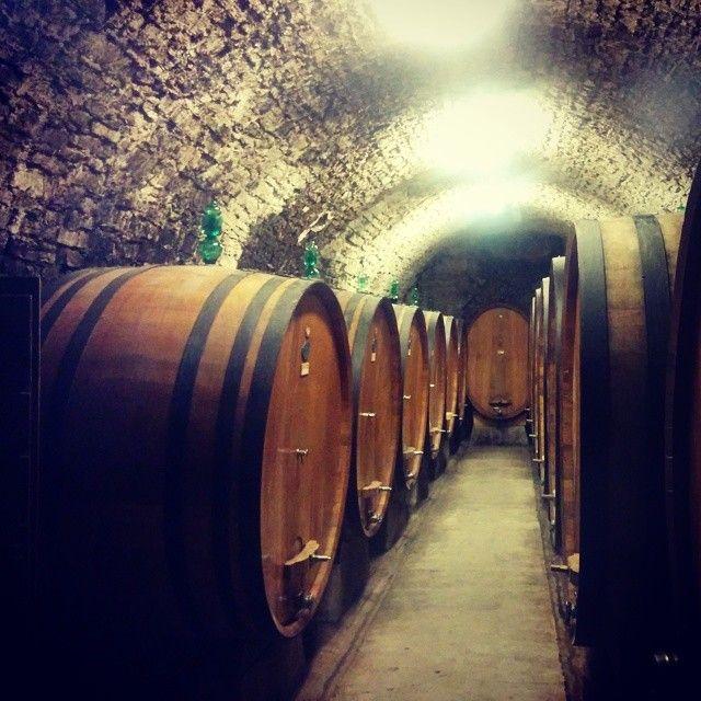 Castellina in Chianti in SI
