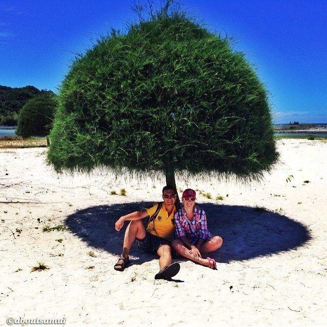 Визитной карточкой соседнего острова Панган на наш взгляд является пляж Малибу Это наше старое но любимое фото оттуда Где ещё Вы найдёте такие милые деревья-грибочки? Наверно нигде а ещё тут белоснежный песок и бесплатные гамаки