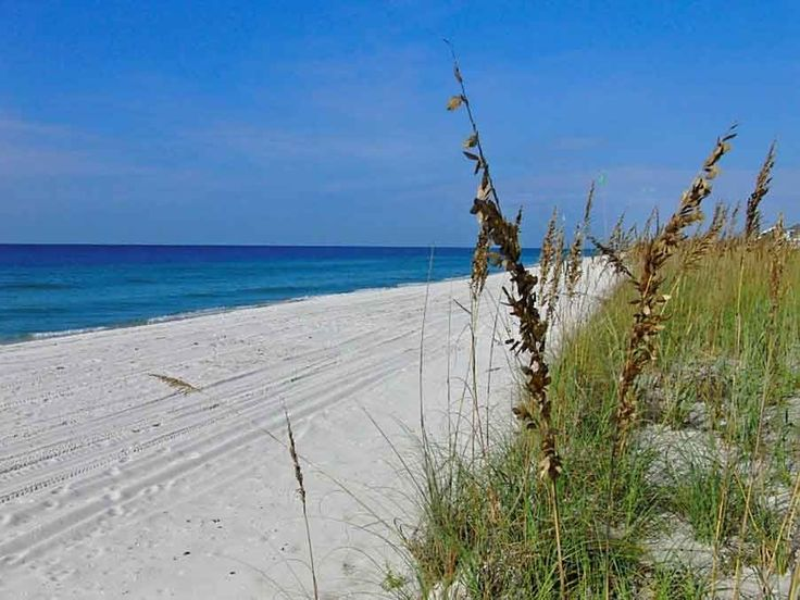 85 Best Images About Navarre Beach Fl On Pinterest