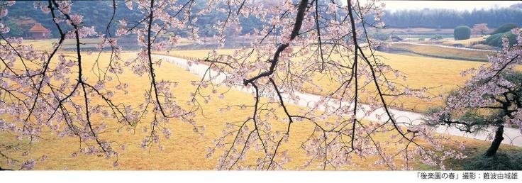 Okayama|岡山(おかやま)|岡山シティミュージアム|岡山市民の日関連企画 写真展 岡山後楽園の四季・前期 岡山が世界に誇る文化財・岡山後楽園は海外でも注目を集め、平成24年には、オランダのフェンロー市立ファン・ボメル・ファン・ダム美術館において「写真家難波由城雄の目が見た―岡山後楽園」が開催されました。展覧会名にある難波由城雄氏は地元岡山の自然写真家で、四季折々に移りゆく後楽園の姿を約30年にわたり写真におさめてきました。今回は、その里帰り展示の意味も込め、オランダに出品された大型写真の内、春夏の写真を中心に展示します