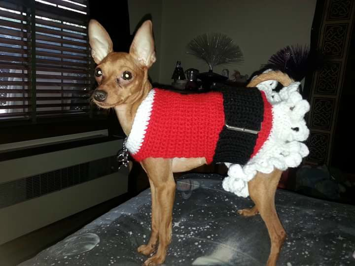 Mejores 155 imágenes de Oblečenie pre psov en Pinterest | Ropa para ...