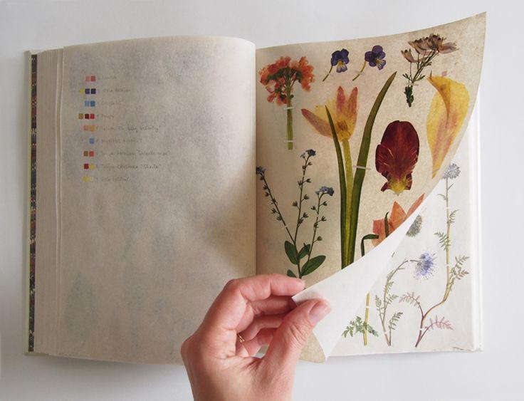 1911 Best PressedDried Flowers Art Images On Pinterest