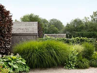 351 best ornamental grasses in the garden images on pinterest for Maiden grass landscaping ideas
