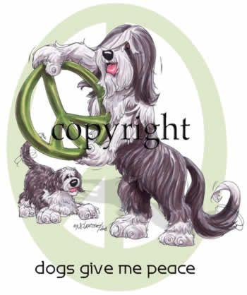 Bearded Collie - Peace Dog