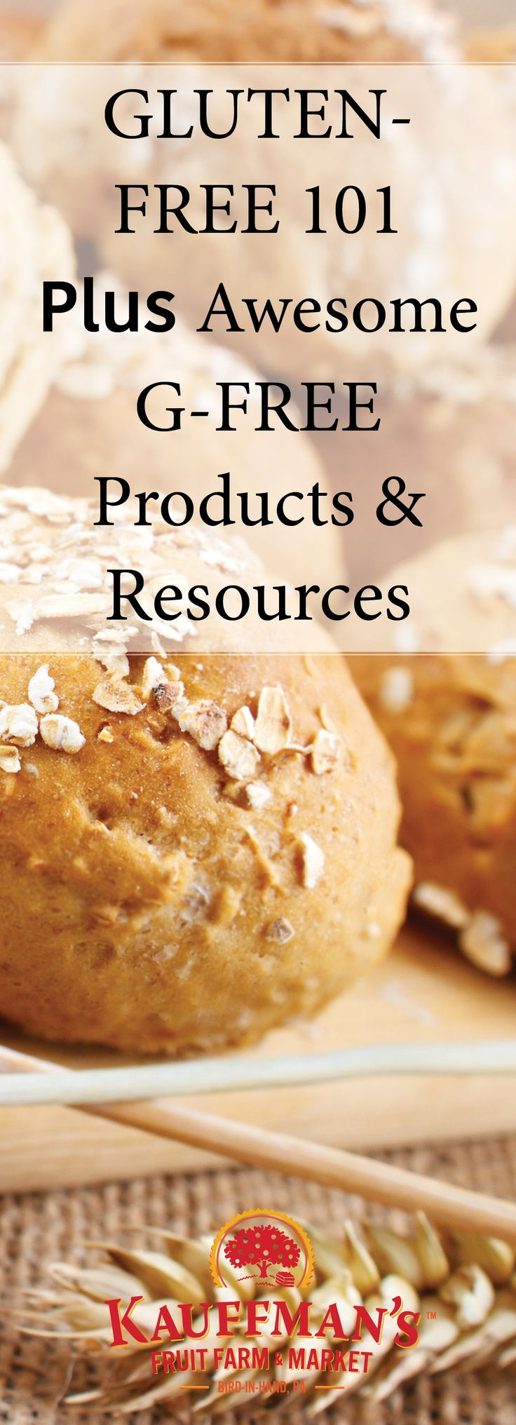 This blog post defines gluten and sheds light on gluten intolerances, allergies, and even Celiac Disease. Even better, it lists some great g-free products, foods, and resources. http://info.kauffmansfruitfarm.com/blog/gluten-free-101-and-awesome-g-free-products-resources