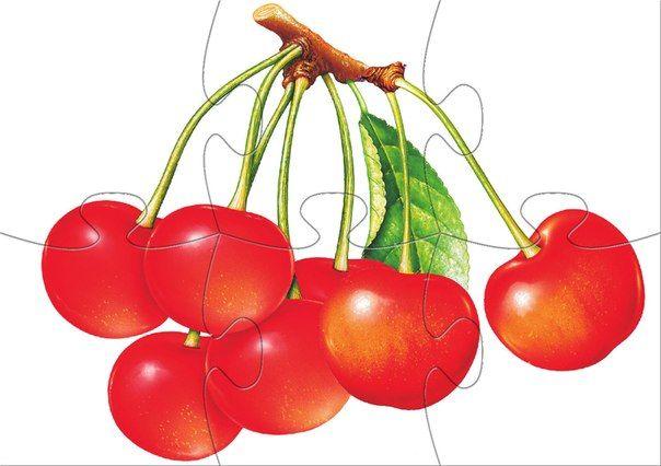 * Fruit puzzel! 5-10